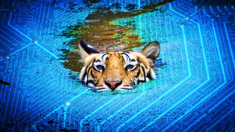 A tiger appears to swim through a microchip.